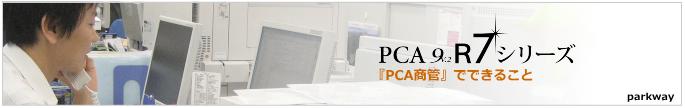PCA商管12